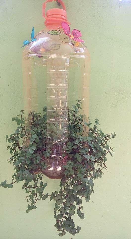 vasos de garrafa pet