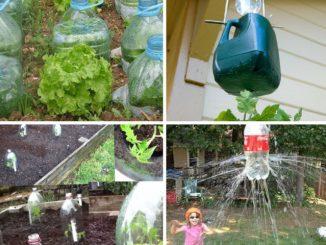 Truques incríveis para jardinagem com garrafa pet